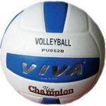 Мяч волейбольный Larsen VIVA PU 052 B, фото 1