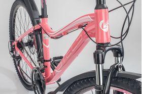 """Велосипед STELS Miss 6100 D 26 V010 (2019) (Светло - красный,15""""), фото 2"""